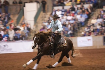 Clinton Anderson Reining at RTTH